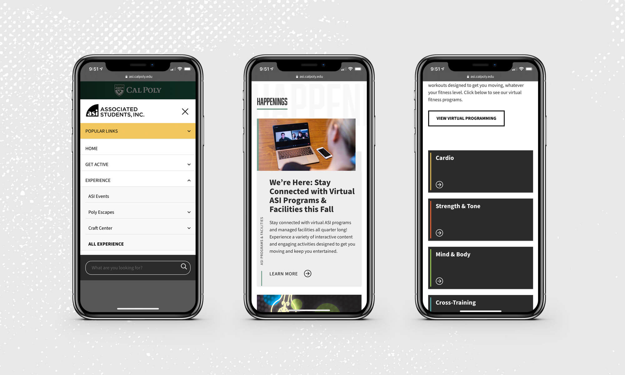 side by side mobile comps of the ASI website